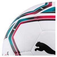Puma teamFinal 21 Lite Ball 290