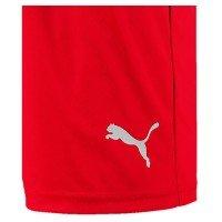 Puma Liga Shorts Core mit Innenslip