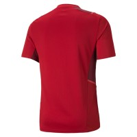 Puma teamCUP Training Jersey