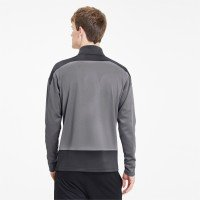 Puma teamGOAL 23 Training 1/4 Zip Top