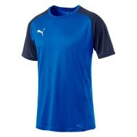 Puma Cup Sideline T-Shirt Core