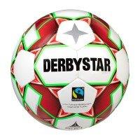 Derbystar Alpha TT
