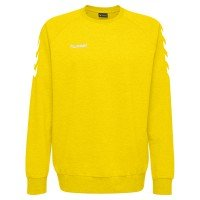 Hummel Go Cotton Sweatshirt Team Set