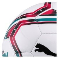 Puma teamFinal 21.6 Mini Ball