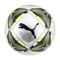 Puma SPIN ball